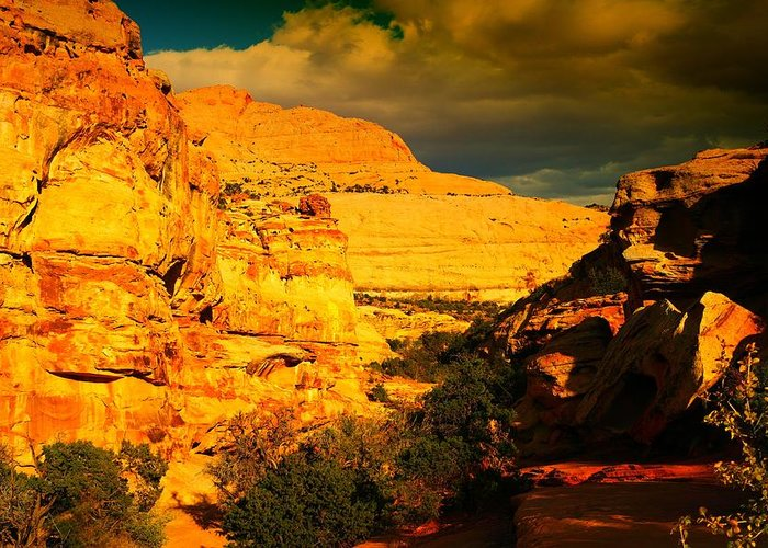 Landscape Greeting Card featuring the photograph Colorful Capital Reef by Jeff Swan