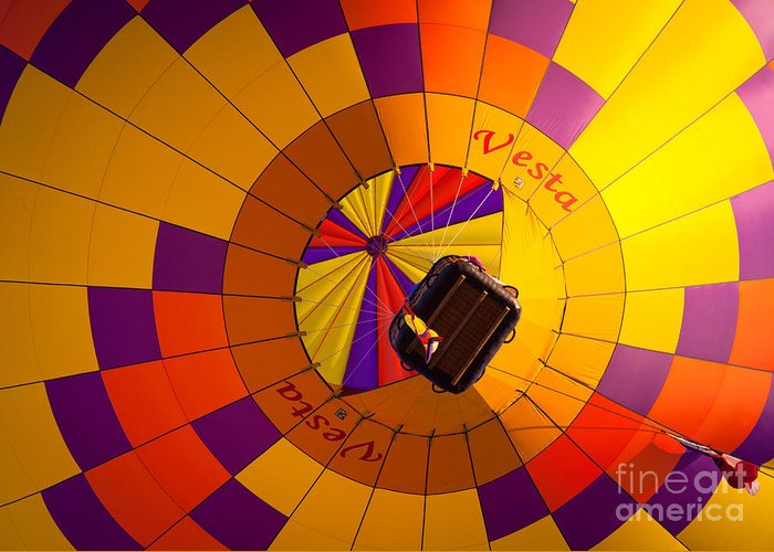 America Greeting Card featuring the photograph Colorful Underbelly by Inge Johnsson