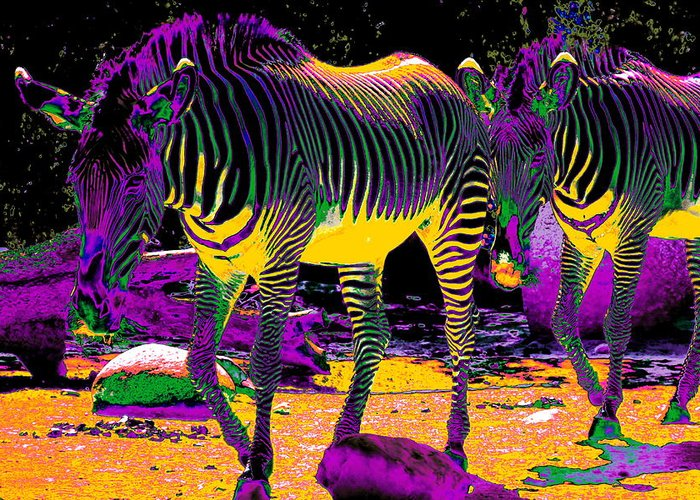 Zebra Greeting Card featuring the photograph Colourful Zebras by Aidan Moran
