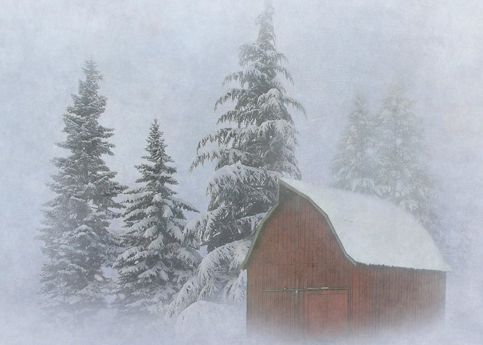 Winter Greeting Card featuring the photograph Country Winter by Angie Vogel