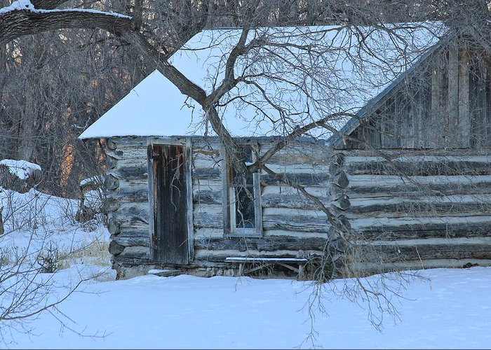 Cabin Greeting Card featuring the photograph Cozy Hideaway by Penny Meyers