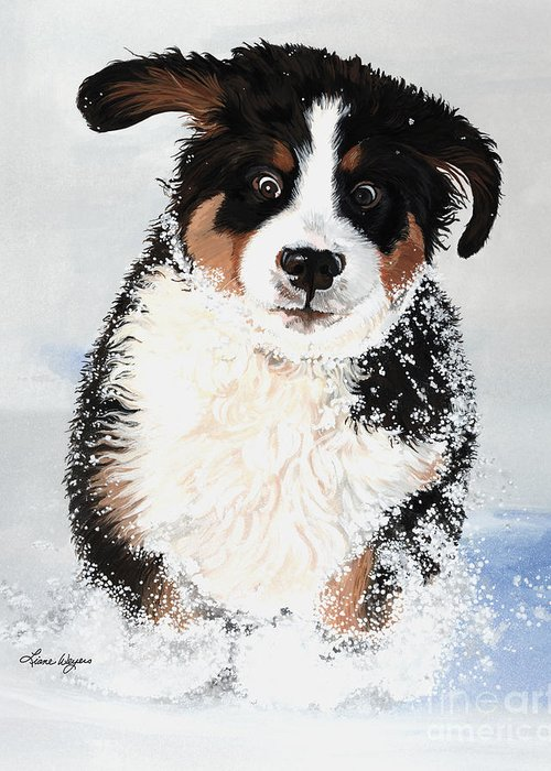 Bernese Mountain Dog Pup Puppy Mounds Of Snow Crazy Playing Happy Snow Drifts Flakes Crazed Liane Weyers Artist Painting Best Berner Artist Greeting Card featuring the painting Crazy For Snow by Liane Weyers
