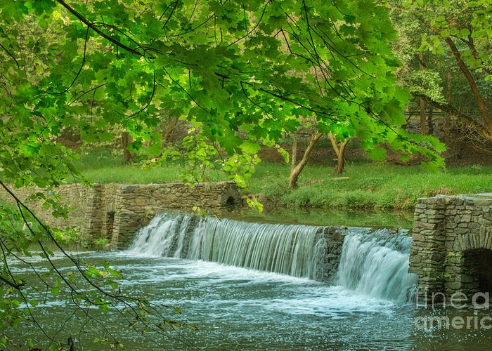 Valley Forge Greeting Card featuring the photograph creek at Valley Forge by Rima Biswas
