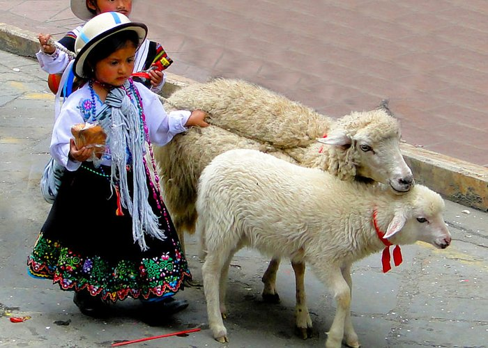 Kid Greeting Card featuring the photograph Cuenca Kids 233 by Al Bourassa