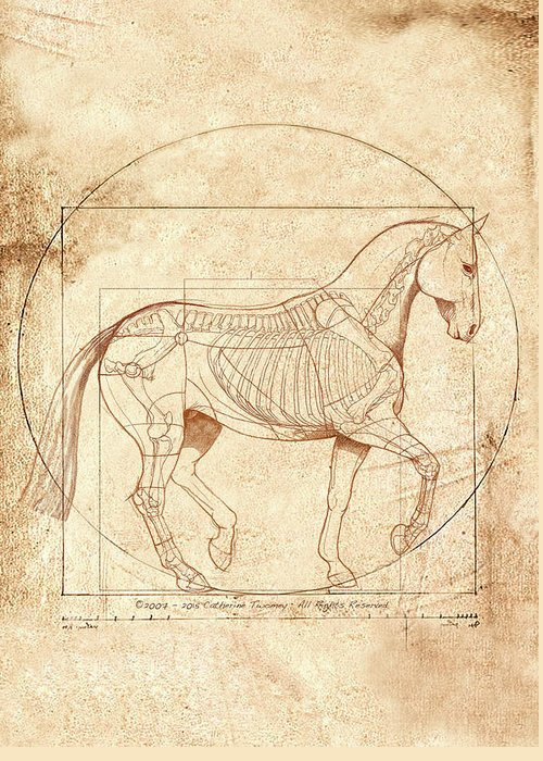 Equine Greeting Card featuring the painting da Vinci Horse in Piaffe by Catherine Twomey