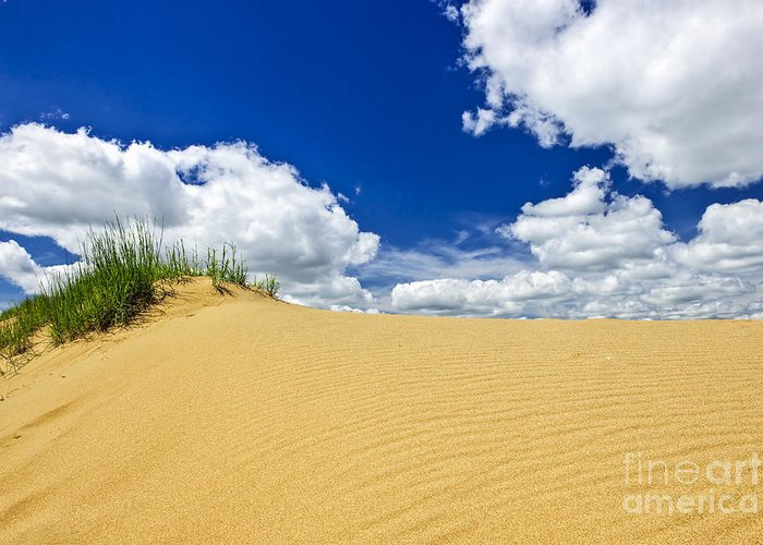 Sand Greeting Card featuring the photograph Desert Landscape In Manitoba by Elena Elisseeva