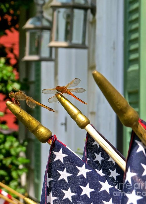 Dragonfly Greeting Card featuring the photograph Dragonflies In Full Salute by Nancy Patterson