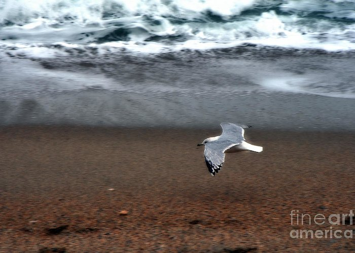 Ocean Photography Greeting Card featuring the photograph Dreamy Serene Ocean Waves Coastal Scene by Kathy Fornal