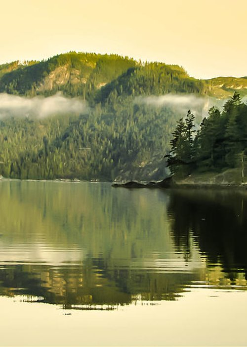 Reflections Greeting Card featuring the photograph Early Morning Reflections by Robert Bales