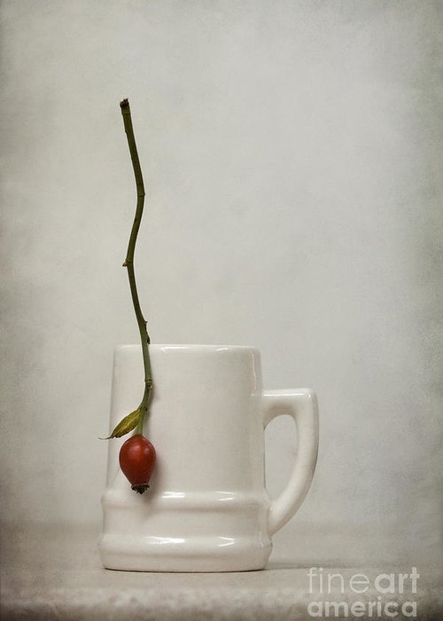 Still Life Greeting Card featuring the photograph Escape by Diana Kraleva