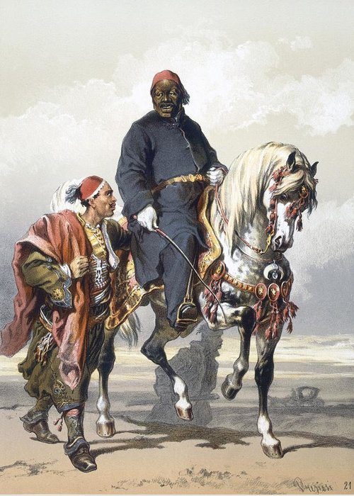 Eunuch Greeting Card featuring the drawing Eunuch Of The Seraglio On A Fine Arab by Amadeo Preziosi