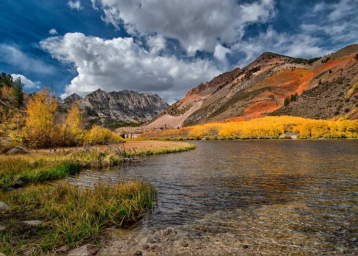 Fall Greeting Card featuring the photograph Fall At North Lake by Cat Connor