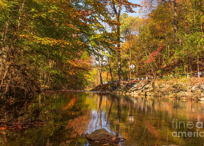 Fall Greeting Card featuring the photograph Fall At Valley Creek by Rima Biswas