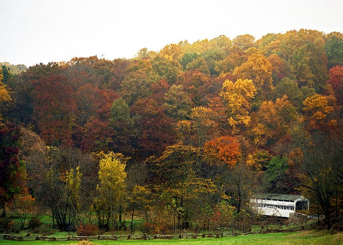 Pa Greeting Card featuring the photograph Fall At Valley Forge by Skip Willits
