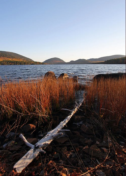 Eagle Greeting Card featuring the photograph Fall Colors At Eagle Lake In Maine by Juergen Roth