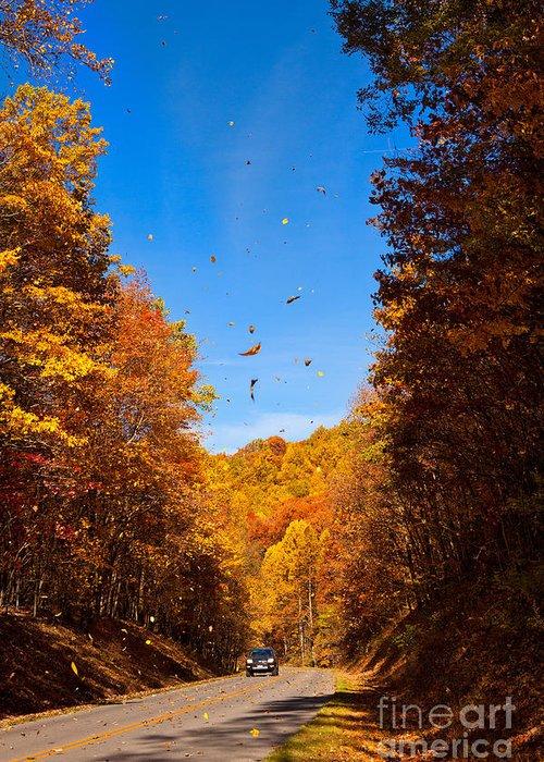 Blue Ridge Parkway Greeting Card featuring the photograph Falling Fall Leaves - Blue Ridge Parkway by Dan Carmichael