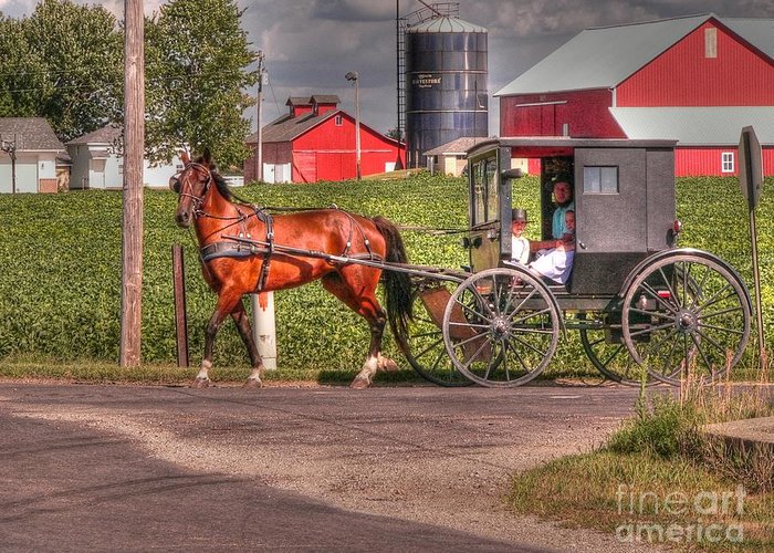 Nappannee Indiana Greeting Card featuring the photograph Family Outing by David Bearden