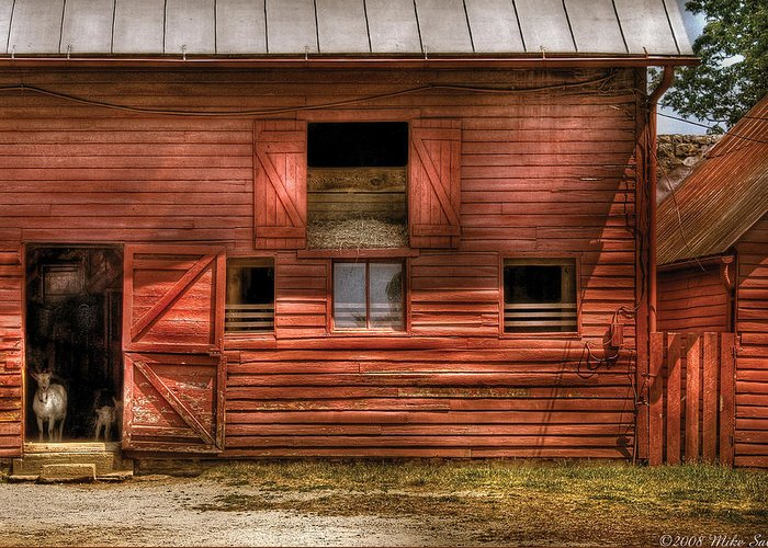 Savad Greeting Card featuring the photograph Farm - Barn - Visiting The Farm by Mike Savad
