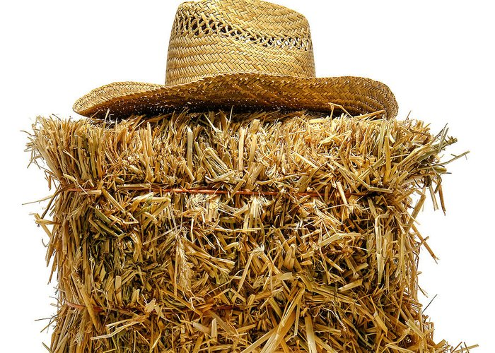 Bale Greeting Card featuring the photograph Farmer Hat On Hay Bale by Olivier Le Queinec