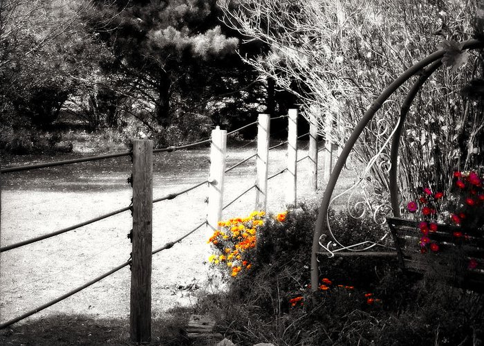 Top Selling Greeting Card featuring the photograph Fence Near The Garden by Julie Hamilton