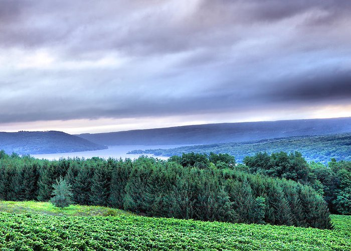 Keuka Lake Greeting Card featuring the photograph Finger Lakes Landscape by Steven Ainsworth