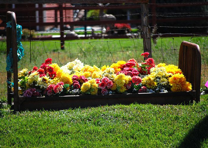 Flower Flowers Bed Iron Cast Dirt Colorful Grass Garden Fence Huntsville Utah Greeting Card featuring the photograph Flower Bed by Holly Blunkall