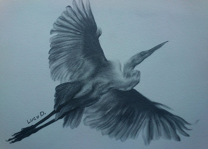 Bird Greeting Card featuring the drawing Fly Away by Lucy D