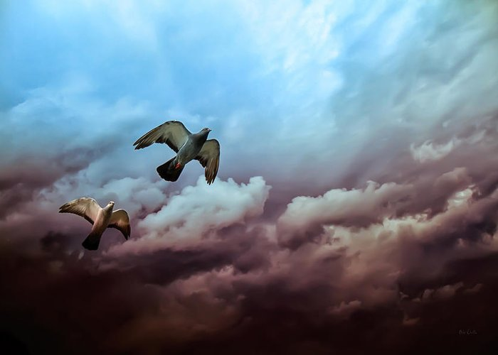 Bird Greeting Card featuring the photograph Flying Before The Storm by Bob Orsillo
