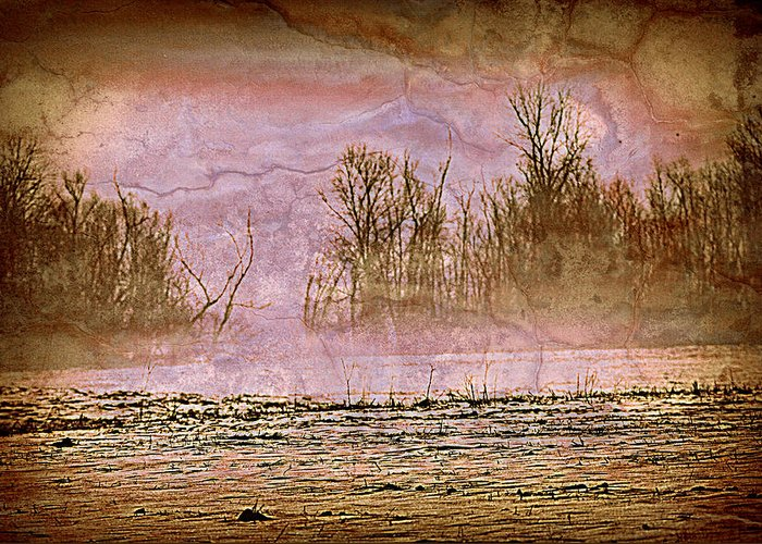 Landscape Greeting Card featuring the photograph Fog Abstract 3 by Marty Koch