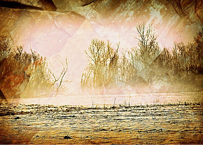Landscape Greeting Card featuring the photograph Fog Abstract 5 by Marty Koch