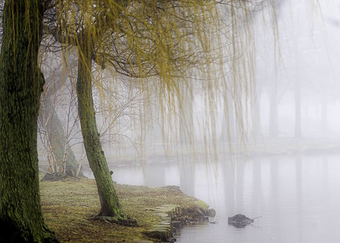 Fog Greeting Card featuring the photograph Foggy Lake Morning by Vicki Jauron