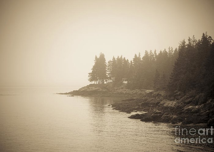 Maine Greeting Card featuring the photograph Foggy Maine Coast by Diane Diederich