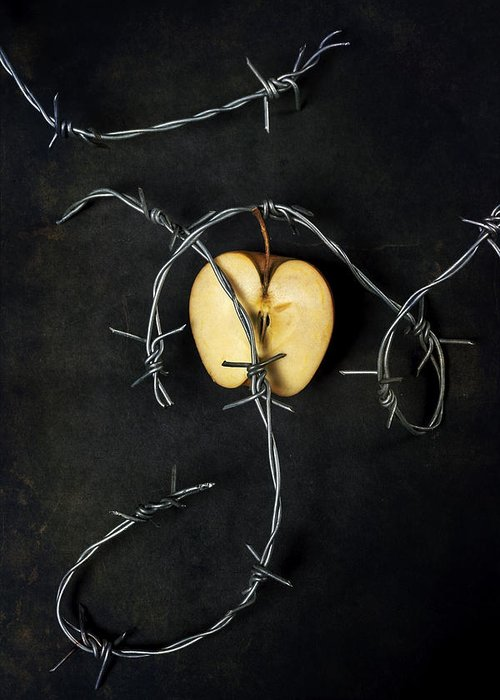 Wire Greeting Card featuring the photograph Forbidden Fruit by Joana Kruse