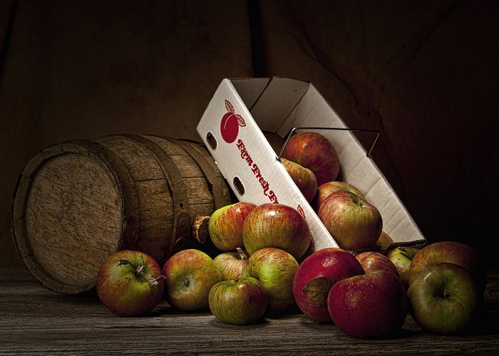Apple Greeting Card featuring the photograph Fresh From The Orchard I by Tom Mc Nemar