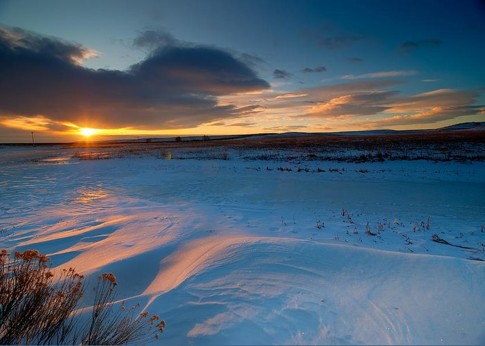 Colorado Greeting Card featuring the photograph Ft Collins Snow Sparkles by Preston Broadfoot