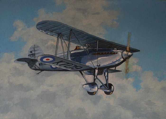 Airplanes Greeting Card featuring the painting Fury II Raf by Murray McLeod