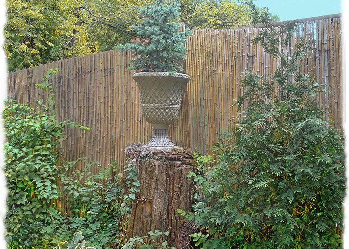 Bamboo Fence Greeting Card featuring the photograph Garden Decor 2 by Muriel Levison Goodwin
