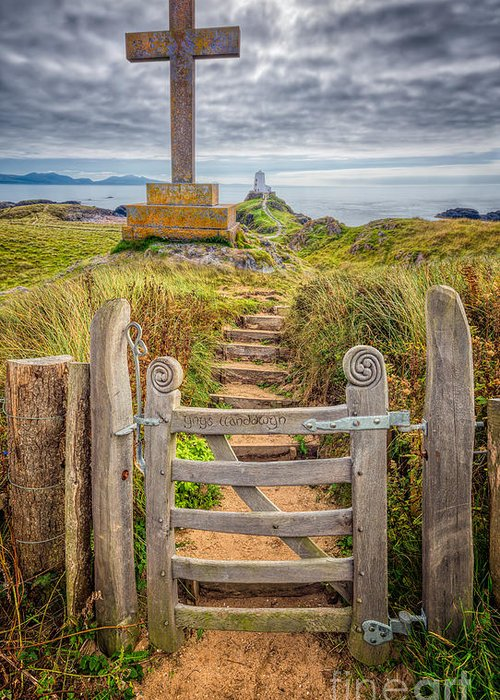 Gate Greeting Card featuring the photograph Gate To Holy Island by Adrian Evans