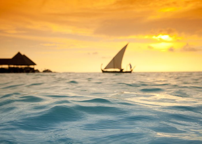 Maldives Greeting Card featuring the photograph Golden Dhoni Sunset by Sean Davey