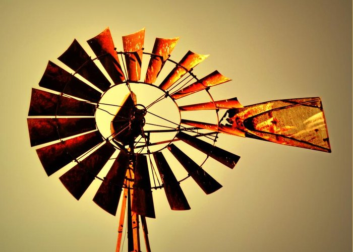 Windmill Greeting Card featuring the photograph Golden Light Windmill by Marty Koch