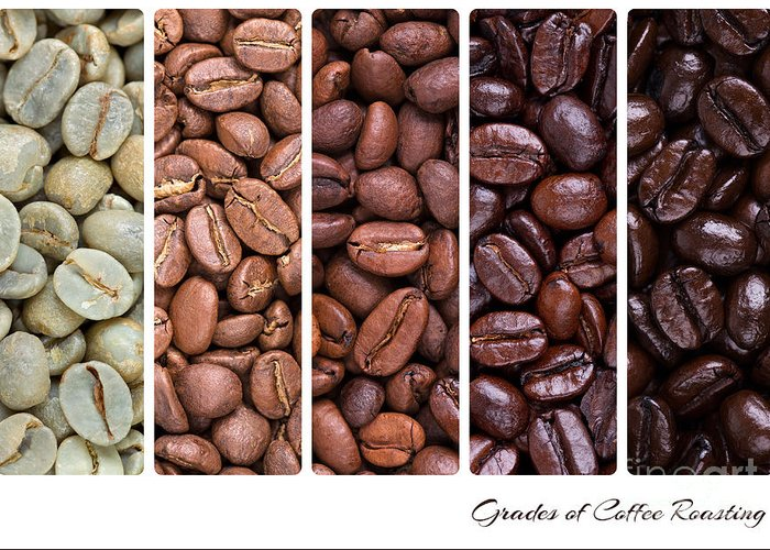 Addiction Greeting Card featuring the photograph Grades Of Coffee Roasting by Jane Rix