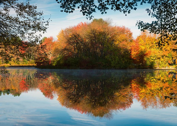 Grist Millpond Greeting Card featuring the photograph Grist Millpond Framed by Michael Blanchette