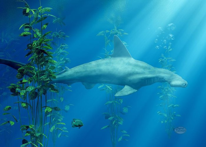 Shark Greeting Card featuring the digital art Hammerhead Among The Seaweed by Daniel Eskridge