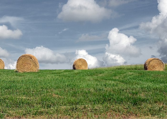 Countryside Greeting Card featuring the photograph Hay Bales by Steven Michael