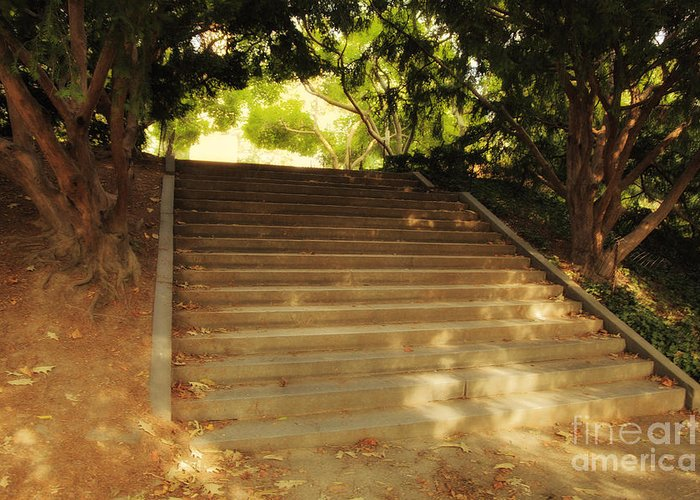 Stairway Greeting Card featuring the photograph Heavenly Stairway by Madeline Ellis