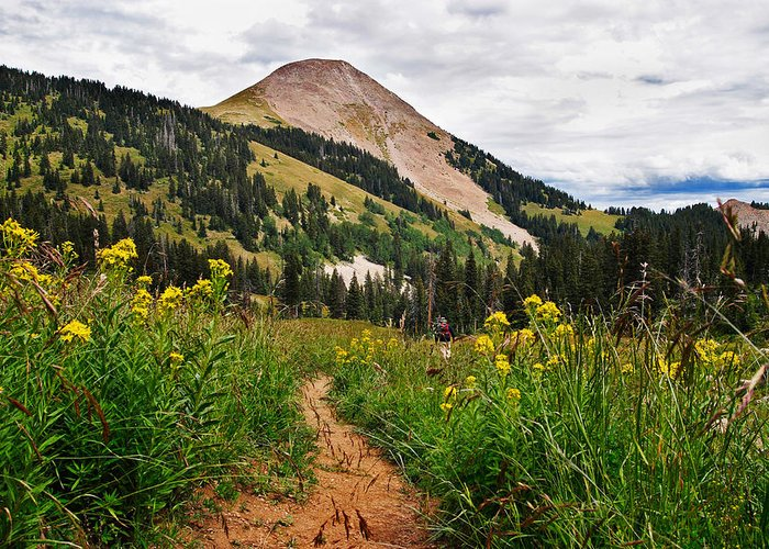 3scape Photos Greeting Card featuring the photograph Hiking In La Sal by Adam Romanowicz