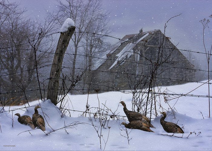 Ron Jones Greeting Card featuring the photograph Home Through The Snow by Ron Jones