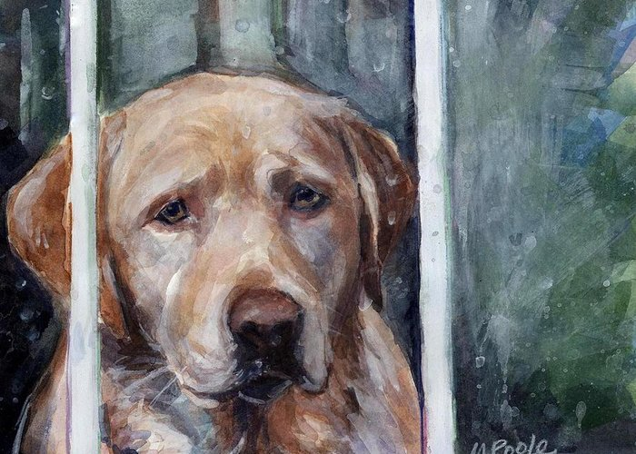 Yellow Dog Greeting Card featuring the painting Homebody by Molly Poole