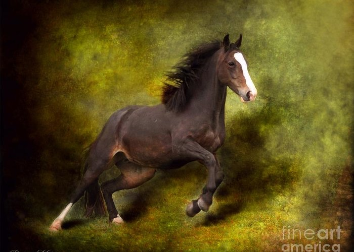 Angel Greeting Card featuring the photograph Horse Angel by Dorota Kudyba