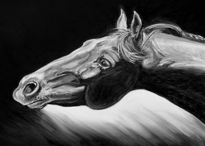 Horse Greeting Card featuring the painting Horse Head Black And White Study by Renee Forth-Fukumoto